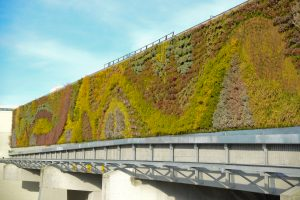 Guildford Mall Living Wall