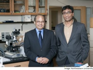 Indian-origin scientists develop new super-thin material