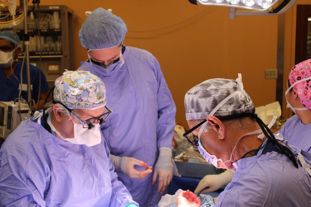 With the arteries and blood vessels complete, Dr. McCabe (l) and Dr. Ronald Zuker (r) – one of the original pioneers of microsurgery – begin to attach the nerves.  Nerve fibres, like hair, grow about 1mm per day. It is expected the patient will start to have feeling in her transplanted hand 200 days after the surgery.  (Photo: University Health Network)