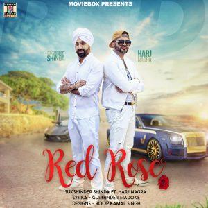sukshinder-shinda-red-rose-poster