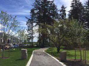 Oak Meadows Park 1